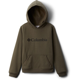 Columbia Columbia Park Sweat À Capuche Garçon, stone green